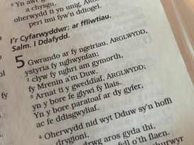 Welsh Bible - Psalm 5
